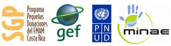 United Nations Development Programs